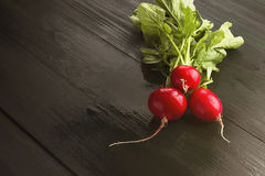 Fresh radish on a dark wooden background. Copy space. Food backg Stock Photography