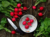Fresh radish flat lay. Top view royalty free stock photography