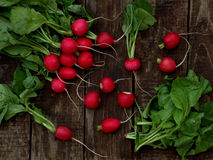 Fresh radish flat lay. Top view stock photography