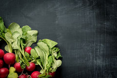 Fresh radish food background. Fresh radish on dark food cooking background Stock Photo