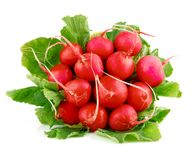Fresh radish fruits with green leaves. Isolated on white background Royalty Free Stock Images
