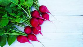 Fresh radish from the garden. Fresh radish from the garden on a wooden background Royalty Free Stock Photography