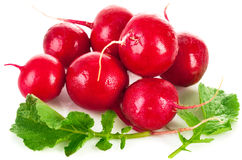 Fresh radish with green leaf. On white background Stock Photo