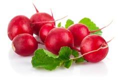 Fresh radish with green leaf Stock Images