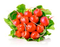 Fresh radish with green leaves. Isolated on white background Royalty Free Stock Photos