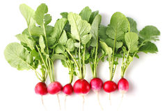 Fresh radish with green leaves. On white background Royalty Free Stock Photos