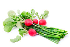 Fresh radish with green onion Royalty Free Stock Images