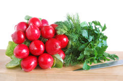 Fresh radish and greens Stock Photos