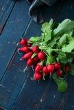 Fresh radish with greens Stock Image
