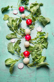 Fresh radish harvest from garden on light blue vintage background. Top view Stock Image