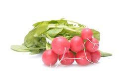 Fresh radish isolated on white. Fresh radish isolated on white Stock Image