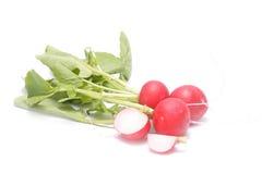 Fresh radish isolated on white. Stock Photos