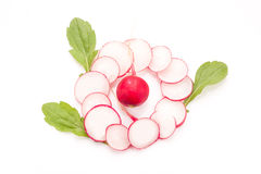 Fresh radish isolated. On white bacground. Natural food Royalty Free Stock Photography