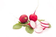 Fresh radish isolated. On white bacground. Natural food Royalty Free Stock Images
