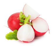 Fresh radish isolated on the white background Stock Photography