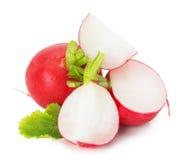 Fresh radish isolated on the white background Stock Photography