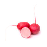 Fresh radish isolated on white background. Fresh radish isolated on a white background Royalty Free Stock Photo