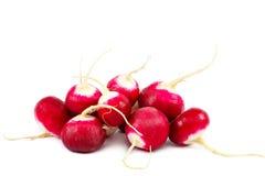 Fresh radish isolated on white background.  Stock Image