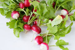 Fresh radish with leaves. Fod top view Stock Images