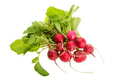 Fresh radish. With leaves isolated Stock Images