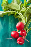Fresh radish with leaves over green background.  Stock Photo