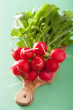 Fresh radish with leaves over green background.  Royalty Free Stock Photos