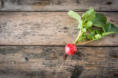 Fresh radish with leaves on wooden table Stock Image