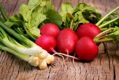 Fresh radish with leek on nwooden board Royalty Free Stock Images