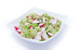 Fresh radish and lettuce salad. In white plate on white background Royalty Free Stock Photo