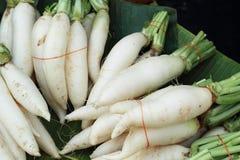Fresh radish in the market Royalty Free Stock Photo