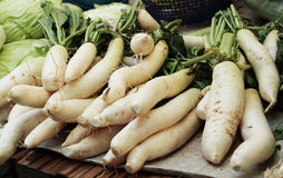 Fresh radish in the market.  Royalty Free Stock Photography