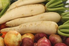 Fresh radish in the market Stock Photography