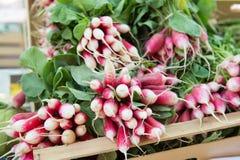Fresh radish at the market. Fresh radish in wooden crates at the market Stock Photo