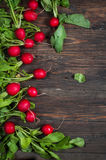 Fresh radish on old wooden table. Radish background. Rustic Style.  Stock Images