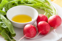 Fresh radish and olive oil on plate Royalty Free Stock Photography