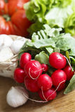 Fresh radish. And other vegetables Stock Image