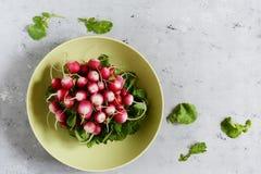 Young radish in a bun. Fresh spring vegetables. Salad. Healthy food. Fresh radish ready to eat in salad. Healthy food Stock Photos