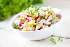 Fresh radish salad. With apple pieces Royalty Free Stock Image