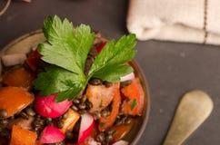 Fresh radish salad with green italian parsley. Vegetarian and Vegan Stock Image