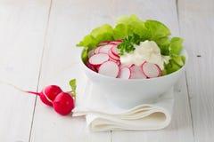 Free Fresh Radish Salad In A Bowl Stock Photos - 31654543