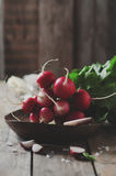 Fresh radish and salt on the wooden table. Selective focus and toned image Stock Image