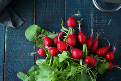 Fresh radish on table for salad Royalty Free Stock Photography