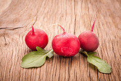 Fresh radish vegetables Royalty Free Stock Photo