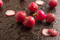 Fresh radish. In a wet background Stock Image