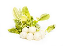 Fresh radish on white background. On white background Stock Photos