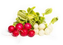 Fresh radish on white background. On white background Stock Images
