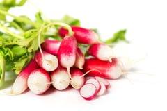 Fresh radish on white. Background Stock Photo