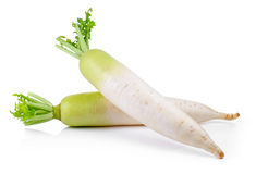 Fresh radish on white background. Fresh radish on a white background Stock Photography