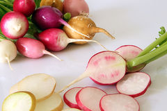 Fresh radish on white background. Fresh multi-coloured radish on white background Stock Images