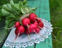 Fresh radish on white napkin Royalty Free Stock Photos